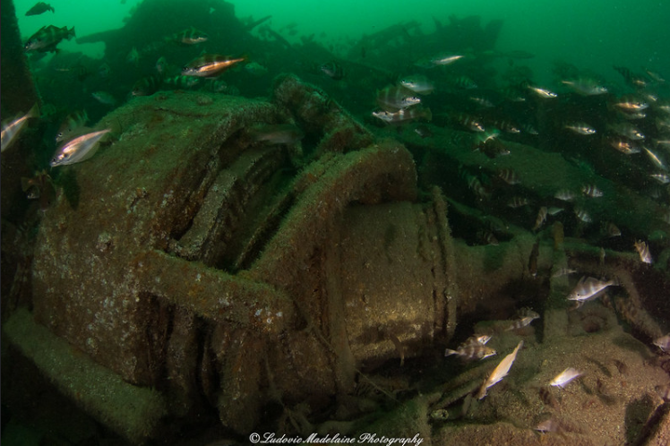 Mystérieuses épaves de Normandie : le HMS Lawford, un vestige du D-Day ! By Jack35 2-1